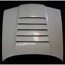 e36 bonnet with air-intake